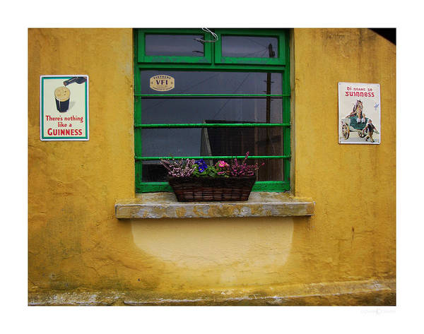 Photograph - Nothing Like A Guinness by Tim Nyberg