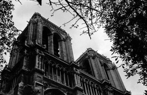 Photograph - Notre Dame 1 by Lee Santa