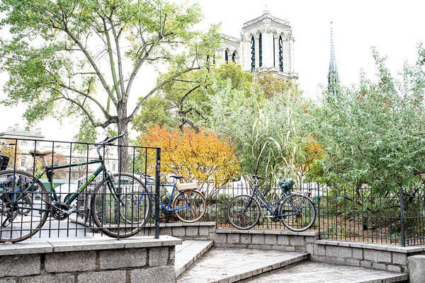 Photograph - Notre Dame Behind Bicycle Park by Jean Gill