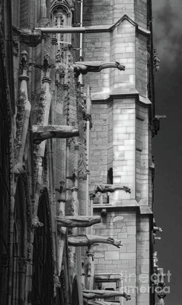 Photograph - Notre Dame Cathedral Gargoyles by Gregory Dyer