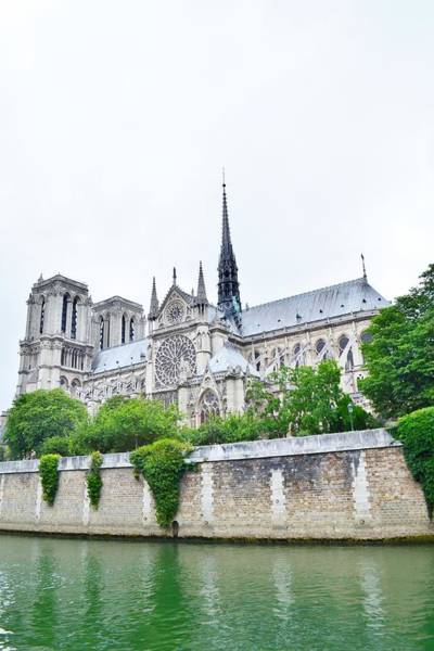 Photograph - Notre Dame Cathedral Side View by Kim Bemis