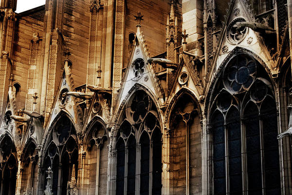 Photograph - Notre Dame by David Chasey