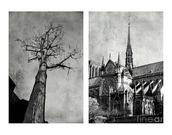 Photograph - Notre Dame De Paris by Elena Nosyreva