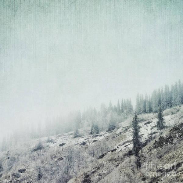 Wall Art - Photograph - November Fog by Priska Wettstein