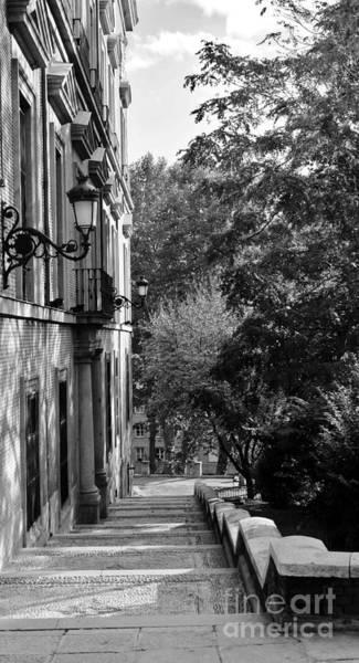 Photograph - November Light In Madrid by Karina Plachetka