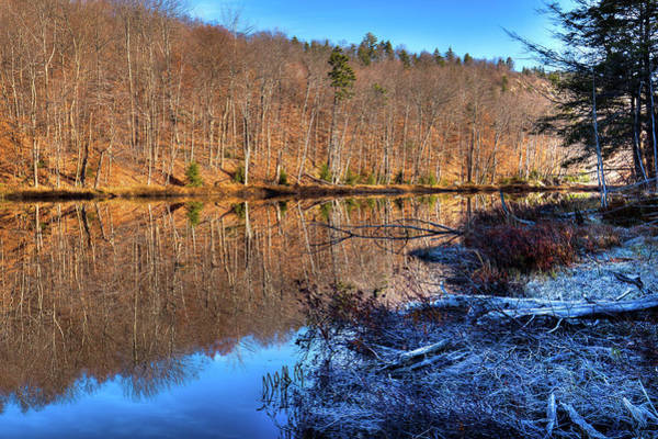 Photograph - November Reflections - Bald Mountain Pond by David Patterson