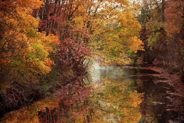 Photograph - November Reflections by Jessica Jenney
