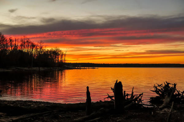 Photograph - November Sunset Manasquan Reservoir Nj by Terry DeLuco