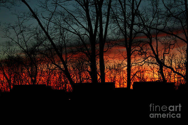 Photograph - November Twilight by Karen Adams