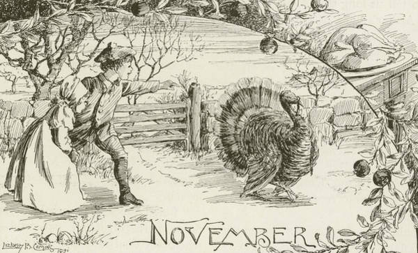 Apple Drawing - November   Vintage Thanksgiving Card by American School