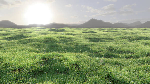 Grass Digital Art - Nowhere by Andre Deherrera