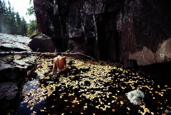 Photograph - Nude In A Pool Of Leaves by Wayne King