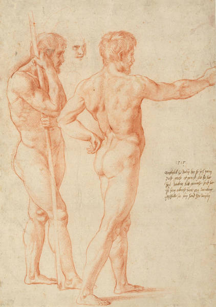 Italy Drawing - Nude Studies by Raphael