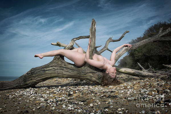 Photograph - Nude Woman Entwined In Fallen Tree by Clayton Bastiani