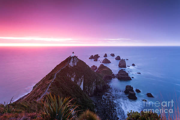 Wall Art - Photograph - Nugget Point Lighthouse At Dawn - New Zealand by Matteo Colombo