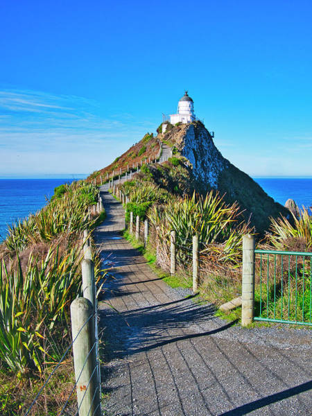Photograph - Nugget Point Lighthouse - Catlins - New Zealand by Steven Ralser