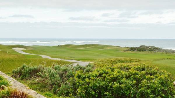 Digital Art - Number 1 From The Whites At Spanish Bay by Barbara Snyder