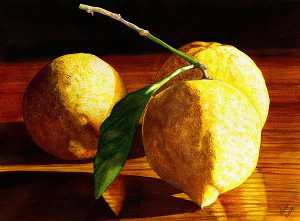 Nurse Beckys Lemons Art Print