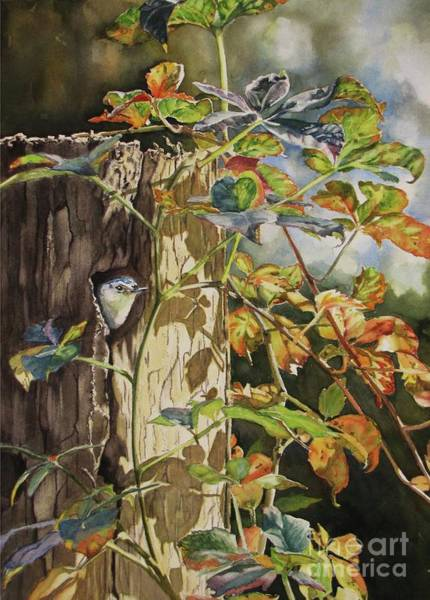 Painting - Nuthatch And Creeper by Greg and Linda Halom