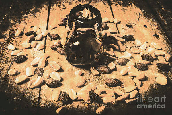 Delicious Wall Art - Photograph - Nuts About Vintage Still Life Art by Jorgo Photography - Wall Art Gallery