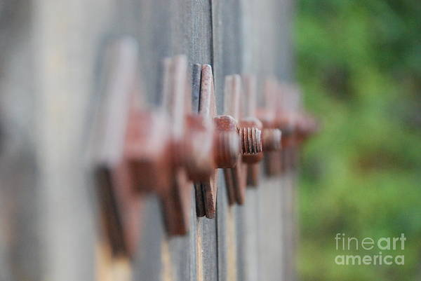 Wall Art - Photograph - Nuts And Bolts by Lori Leigh