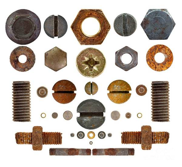 Wall Art - Photograph - Nuts, Rivets, Bolt Heads And Screws On Transparent Background by Michal Boubin
