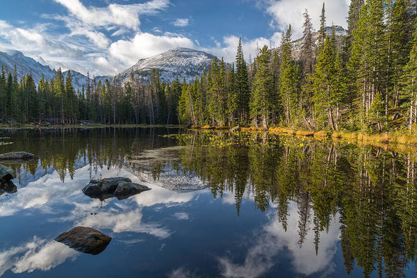Photograph - Nymph Lake by Dustin LeFevre
