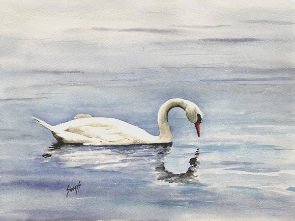 Water Fowl Painting - Nymphenburg Swan by Sam Sidders