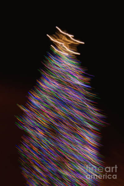 Wall Art - Photograph - O Christmas Tree by Margie Hurwich