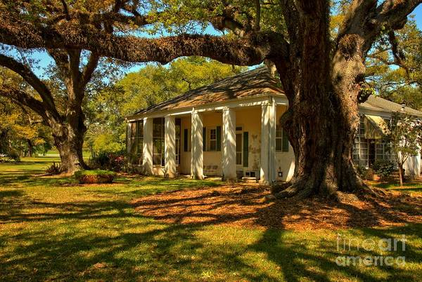 Photograph - Oak Alley Historic Building by Adam Jewell