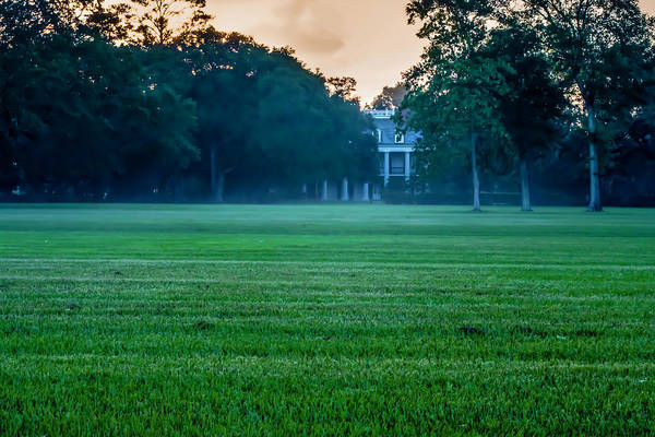 Photograph - Oak Alley Plantation In Profile by Chris Coffee