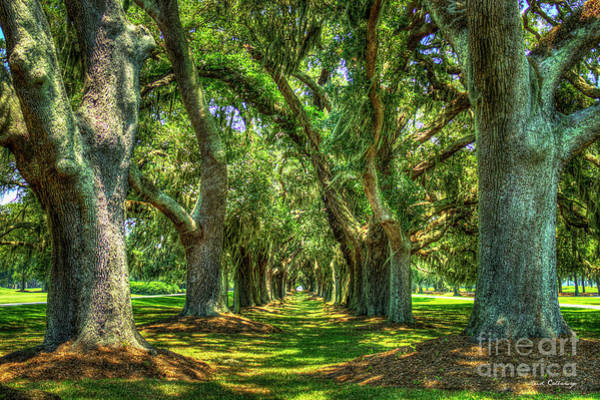 Photograph - Oak Alley Retreat Avenue St Simons Island Ga Art by Reid Callaway