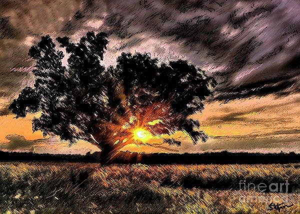 Digital Art - Oak At Sunset by Stefan Duncan