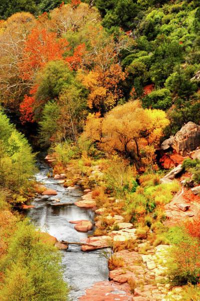 Photograph - Oak Creek Canyon by Howard Bagley
