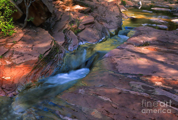 Wall Art - Photograph - Oak Creek Canyon Splendor by Sandra Bronstein