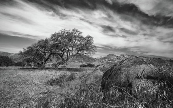 Sweeping Photograph - Oak, Meadow, Boulder by Joseph Smith
