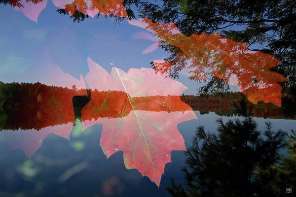 Photograph - Oak Pond by John Meader