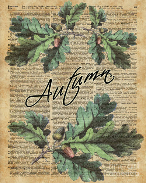 Wall Art - Digital Art - Oak Tree Leaves And Acorns, Autumn Dictionary Art by Anna W