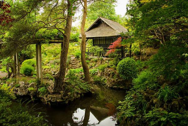 Gleeson Photograph - Oasis Of Serenity by Fergal Gleeson