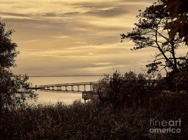 Photograph - Obx Sunset In Sepia by Jeff Breiman