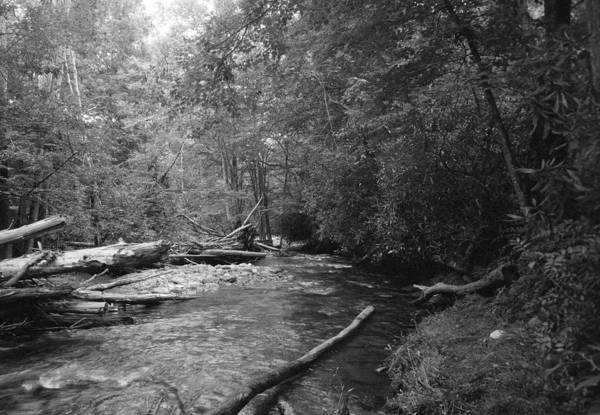 Wall Art - Photograph - Ocanaluftee River - Great Smokey Mountains by William Wetmore