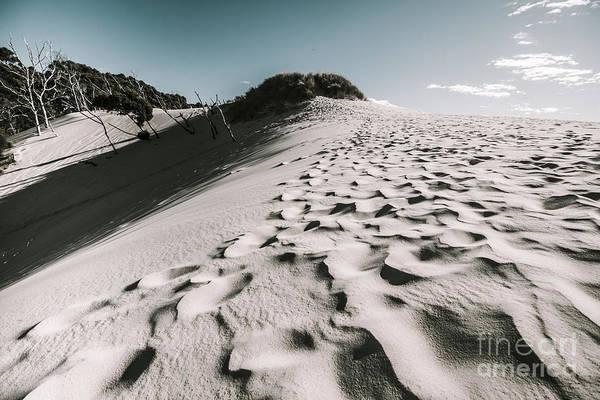 Wall Art - Photograph - Ocean Beach Desert In Tasmania by Jorgo Photography - Wall Art Gallery