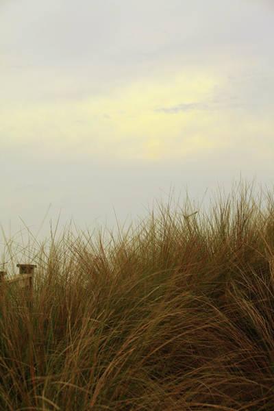 Wall Art - Photograph - Ocean Beyond  by Toni Hopper