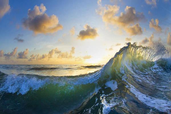 Wall Art - Photograph - Ocean Bouquet  -  Part 1 Of 3 by Sean Davey