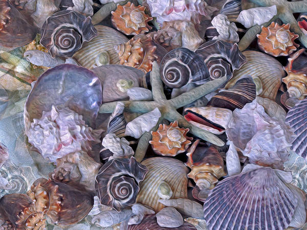 Photograph - Ocean Gems 11 by Lynda Lehmann