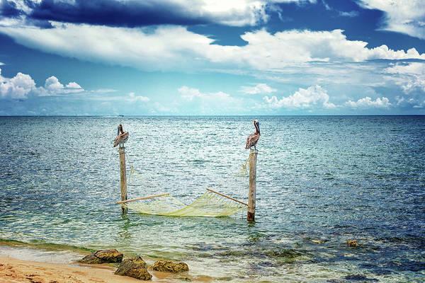 Photograph - Ocean Hammock by Victor Culpepper