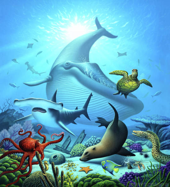 Wall Art - Digital Art - Ocean Life by Jerry LoFaro