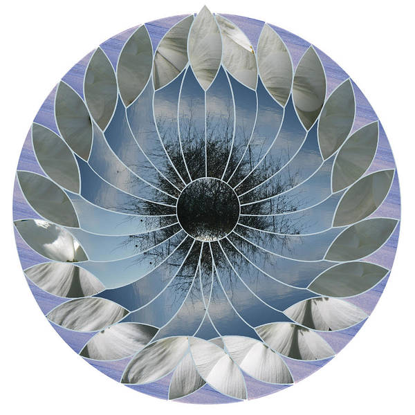 Wall Art - Digital Art - Ocean Lotus by Terry Davis