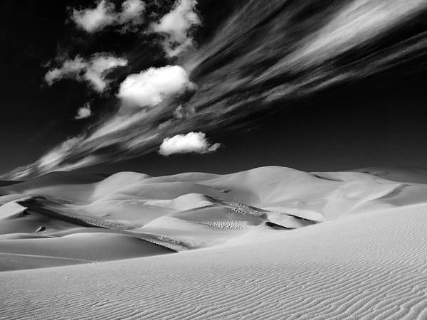 Photograph - Ocean Of Sand by Dominic Piperata