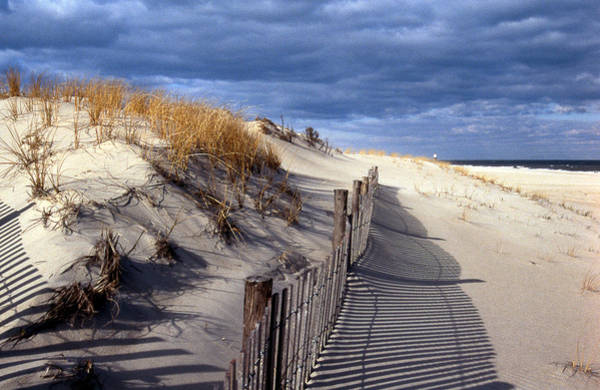Delaware State Park Wall Art - Photograph - Ocean Side by Skip Willits